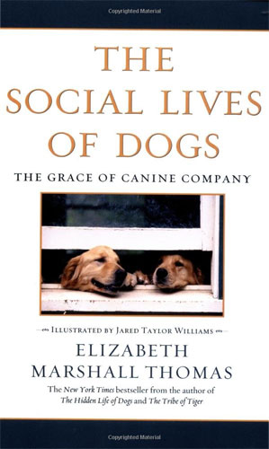 The Social Lives of Dogs