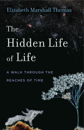 Bookstock Literary Festival, The Hidden Life of Life